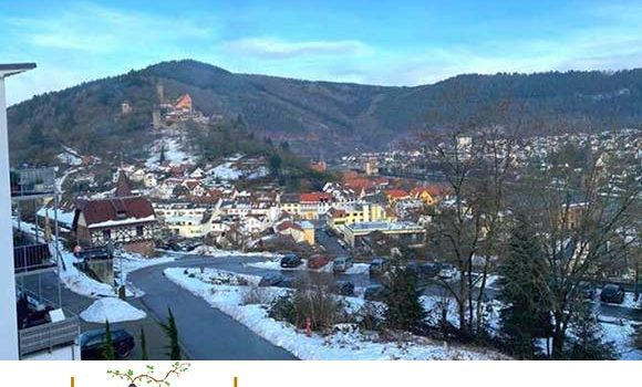 454_Schöne 1-Zimmerwohnung – Erstbezug – mit Blick ins Neckartal